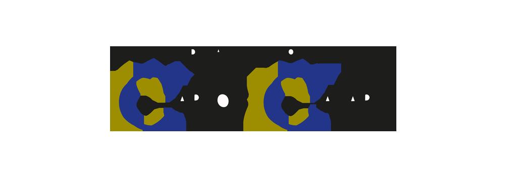 Fundacion Carlos Casares
