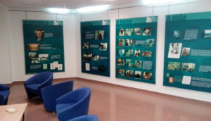 Mostra biográfica e bibliográfica sobre Carlos Casares @ Centro Social de Boiro